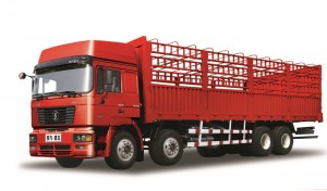 Hot New Products Shacman F3000 6×4 Lorry Truck -