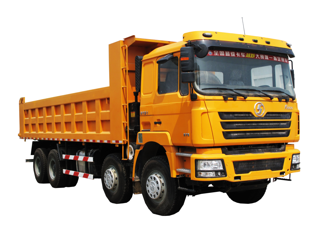 OEM Supply Shacman F2000 10 Wheeler Tipper Truck -