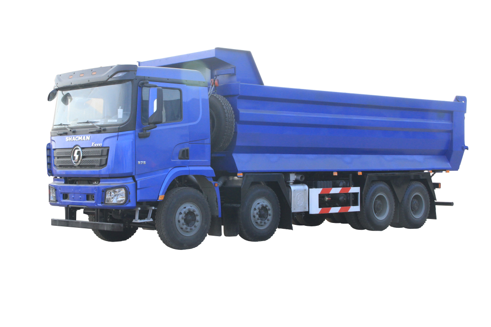 Chinese Professional Shacman H3000 6×4 Lorry Truck -