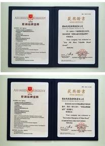 Chinese brand vechile